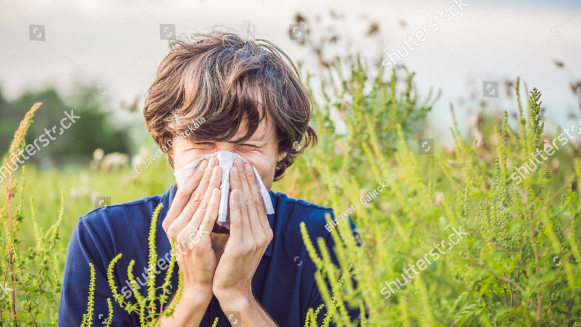 Allergy Season Could be Worse this Year: Here's How to Get Ready
